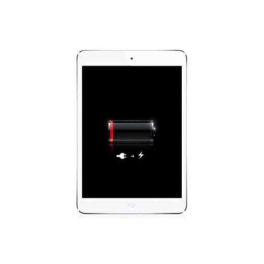iPad mini Battery Replacement Service