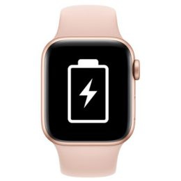 Apple Watch Series 3 38mm Battery Replacement Service